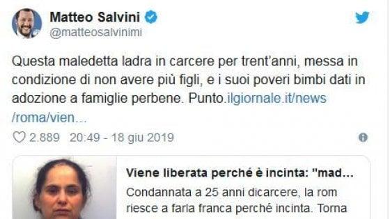 """Salvini invoca la sterilizzazione di una donna rom: """"Ladra, in carcere in condizione di non fare più figli"""".  Il Pd: """"Barbarie"""""""