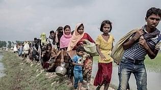 "Rohingya, ""I fallimenti dell'Onu"": nei campi profughi 128 mila musulmani e 720 mila persone fuggite in Bangladesh"