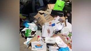 Ozpetek riprende i rifiuti nelle strade: 'Vedere Roma così fa male'