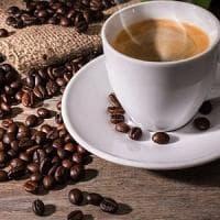 Rimedi contro le zanzare: il caffè fa miracoli