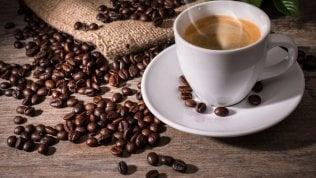 Il caffè può fare miracoli contro le zanzare. Ecco come debellare il grande nemico dell'estate
