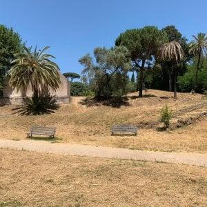 I giardinieri assenteisti nella giungla di Roma