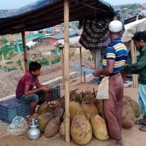 Bangladesh, Cox's Bazar, droga e microcriminalità per i giovani Rohingya in attesa del rimpatrio