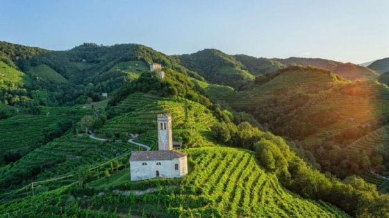 L'Italia brinda alle colline del prosecco, ora patrimonio dell'Umanità