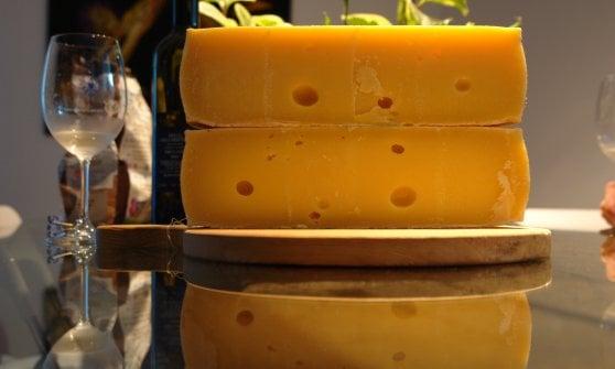 Sapori senza confini: di malga in malga nel nome del formaggio (e della buona musica)
