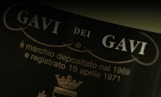 La Scolca: un vitigno rinato, un secolo di vita e la sfida della modernità