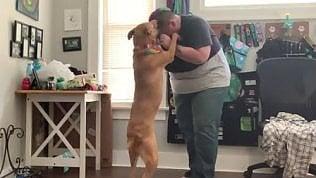 Il cane contro gli attacchi d'ansia: ecco come aiuta la padrona