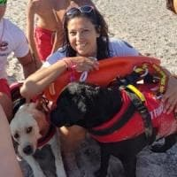 Soverato, bimbo tedesco smarrito in spiaggia, ritrovato grazie a team con cani da...
