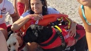 Soverato, bimbo tedesco smarrito in spiaggia, ritrovato grazie a team con cani da salvataggio