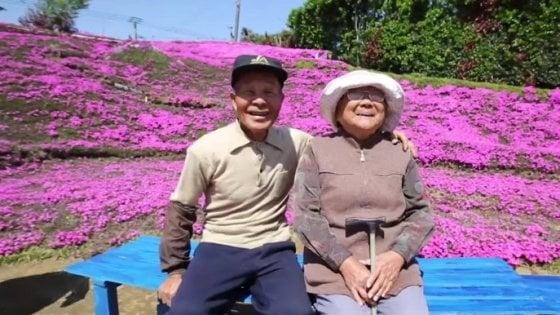 """Giappone, in due anni pianta migliaia di fiori per la moglie cieca: """"Così è tornata a sorridere"""""""