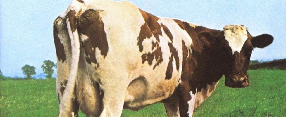 """Aubrey """"Po"""" Powell, l'artista dietro le copertine dei Pink Floyd: """"Ci hanno sempre dato carta bianca"""""""