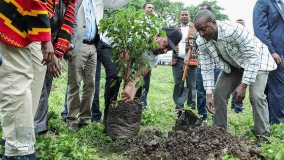 In Etiopia piantati più di 350 milioni di alberi in un giorno