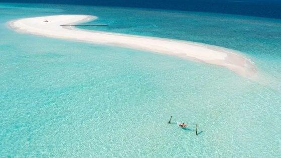 """""""Cercasi libraio alle Maldive per lavorare a piedi nudi"""": l'annuncio da sogno"""