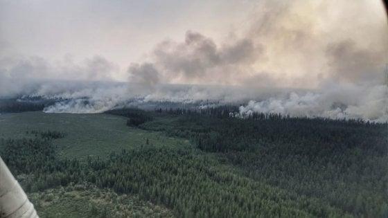 Risultati immagini per siberia in fiamme