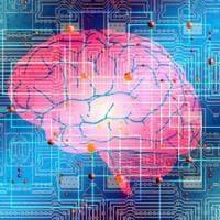 Il cervello controllato da uno smartphone: il test sugli animali