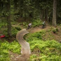 Passione a due ruote: la vacanza in Val di Sole è in bicicletta