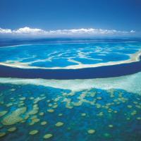 Queensland. Il museo sottomarino diffuso nei fondali da sogno