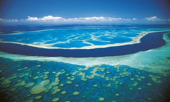 Australia. L'arte si confronta con il reef. Nel Queensland il primo museo sottomarino diffuso del mondo