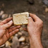 Apple: alla ricerca dell'oro salvando i salmoni