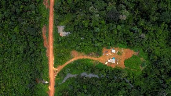 """Brasile, lo scienziato silurato da Bolsonaro per i dati sulla deforestazione: """"Non staremo zitti"""""""