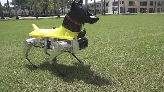 Lintelligenza artificiale di Astro, cane-robot da addestramento