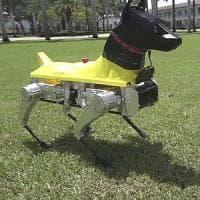 L'intelligenza artificiale di Astro, cane-robot da addestramento
