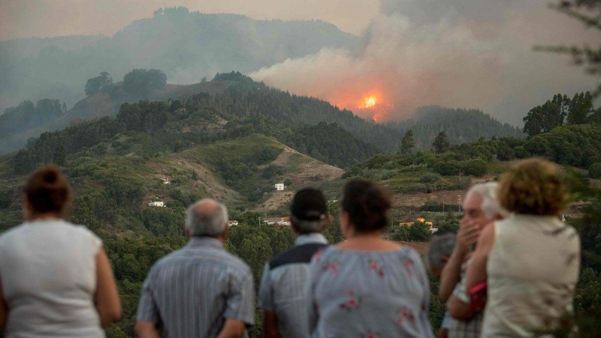 Gran Canaria devastata da un enorme incendio: 9 mila persone ...