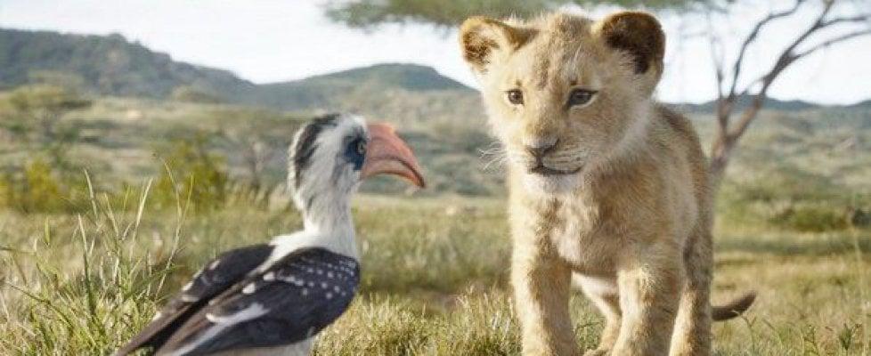Risultati immagini per il re leone