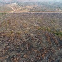 """Record di incendi in Amazzonia: """"Colpa di Bolsonaro"""""""