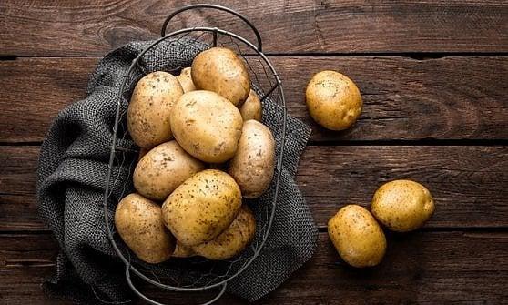 Addio fitofarmaci e residui chimici: arrivano le patate sostenibili