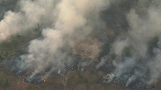 Greenpeace: dagli incendi in Amazzonia un impatto sui cambiamenti climatici