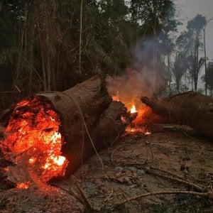 """Amazzonia, Bolsonaro ci ripensa: """"Pronto ad accettare aiuti esteri"""""""