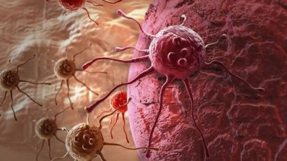 Tumori uccisi dall'assenza di gravità. Dallo spazio una nuova frontiera per le cure