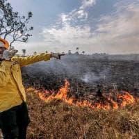 """""""Gli incendi in Amazzonia in tre ecoregioni tra le più importanti del pianeta"""""""