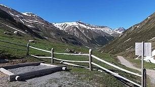 La Valtellina in alpeggio
