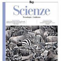 Tutto il Dna sull'Arca della vita. Su Scienze giovedì la raccolta dei geni del mondo...