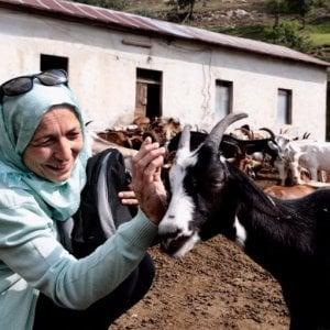 Siria, le piogge migliorano i raccolti, ma le famiglie ancora lottano per sopravvivere