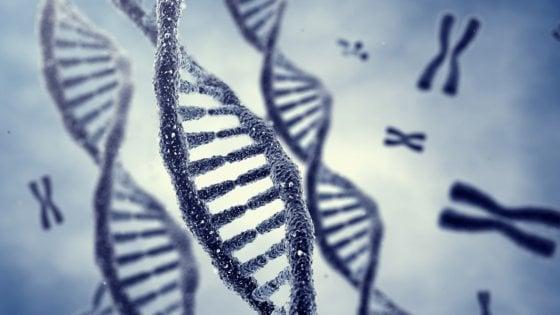 Un gene mutato alla base di alcune disabilità intellettive