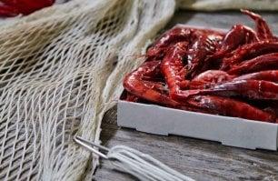 Il Gambero rosso di Mazara (quello vero): un tesoro  dalla lunga storia