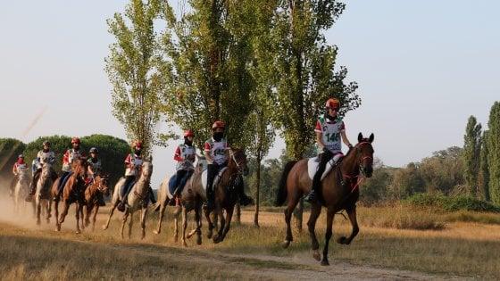 Cavalli e cavalieri, sfila il lusso a San Rossore
