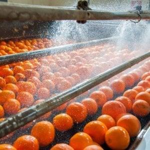 Industria alimentare, al via le trattative per il rinnovo Ccnl