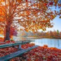 L'equinozio d'autunno 2019 non è né il 21 né il 22 settembre: anche quest'anno arriva il...