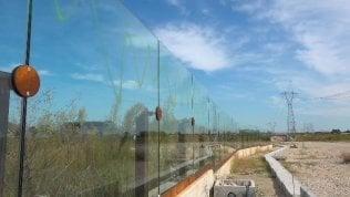 Strage di volatili in autostrada: si schiantano su barriere trasparenti