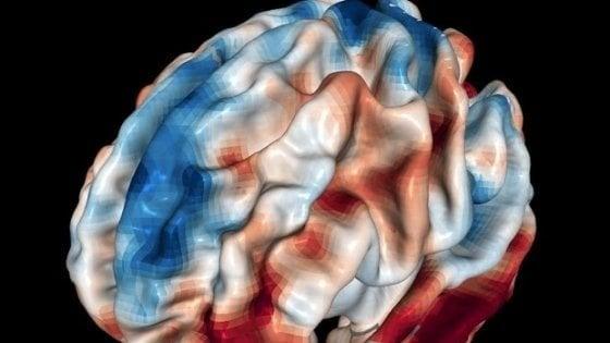"""Le cellule del cervello agiscono come se """"fischiettassero"""" un motivo simile"""