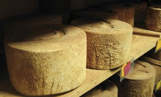 Vino, formaggio, arte e tecnologia: così rinascono i borghi dimenticati