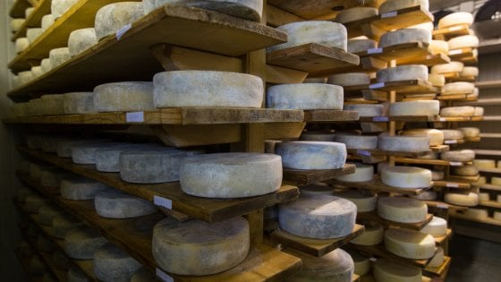 Il gusto della montagna nelle malghe del Friuli Venezia Giulia