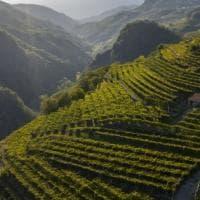 Sapori d'autunno tra le valli trentine