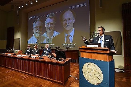Nobel per la Medicina a William Kaelin, Peter Ratcliffe e Gregg Semenza. Studiano come le cellule reagiscono alla carenza di ossigeno