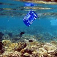 """Ispra: """"Nelle reti dei pescatori più rifiuti che pesci"""""""