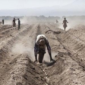 I padroni della terra, il Mali nel mirino degli accaparratori: storie di villaggi agricoli emarginati